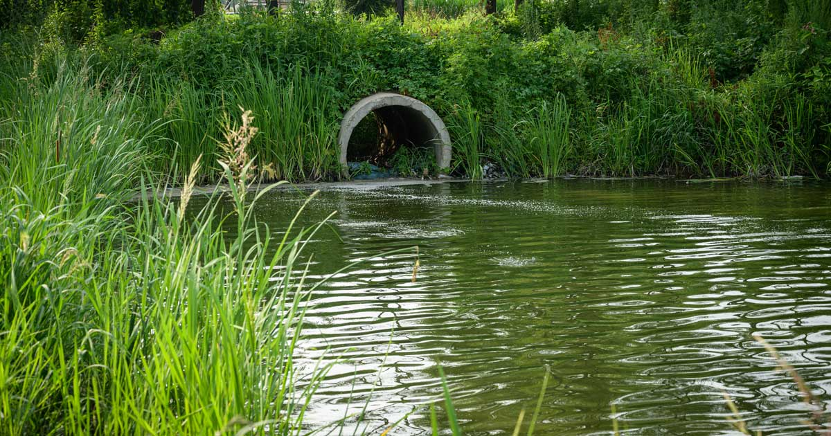 Pipe or tube for water sewer leading into the river.